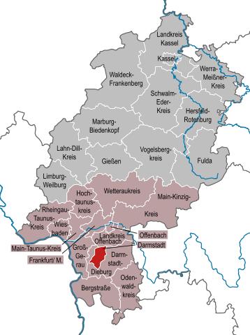Fachgerechte Schädlingsbekämpfung in Darmstadt